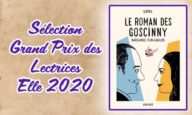 Le roman des Goscinny : une pépite de nostalgie à savourer !